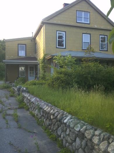 Overgrown abandoned house